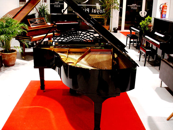 vista-general-del-piano-quien-me-compra